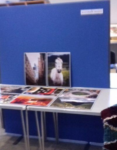 Art Exhibition1 (7)
